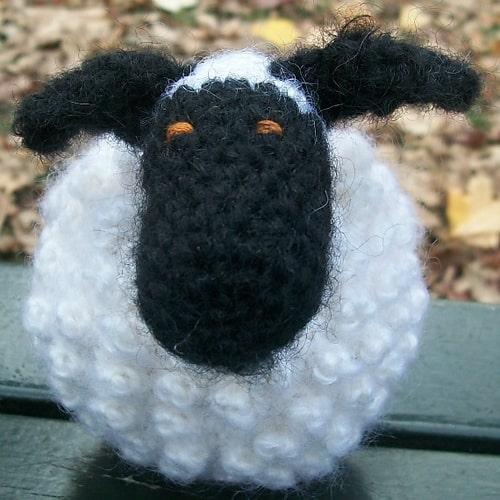 Chubby Sheep