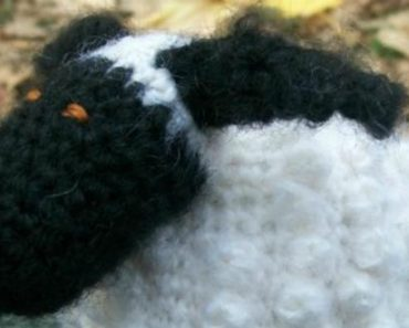 Chubby Sheep (free pattern)