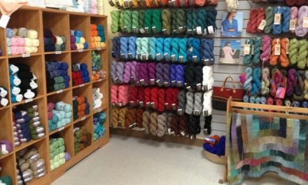 Yarn Store Review: The Yarn Haven