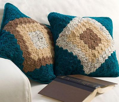 delma-myers-double-take-pillow