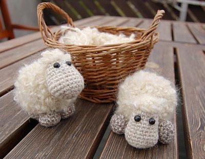 Sheep_Etu_Kristi_Randmaa