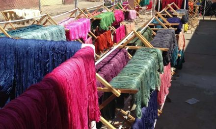 NatCroMo 2016, March 8: Anzula Yarns