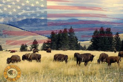 Buffalo Wool Company
