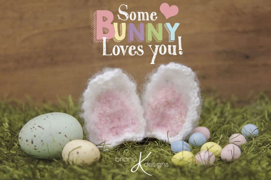 Hoppity Bunny Ears - Briana K Designs