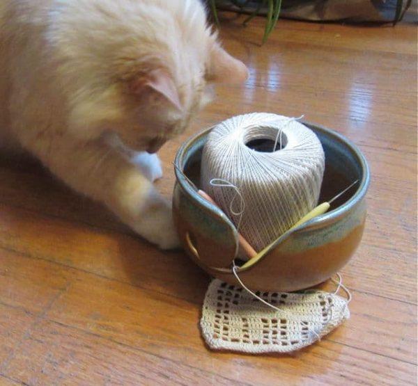 Kathy Kelly | Crochet Bird | NatCroMo Special