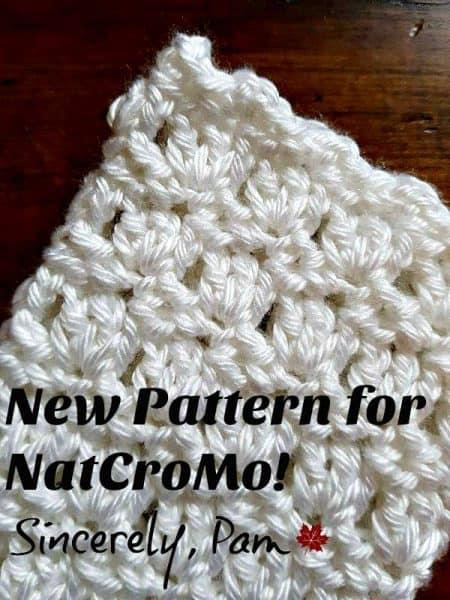 NatCroMo Blog Tour Special - Sincerely Pam